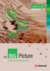 Audio CD. The Big Picture. Pre-Intermediate