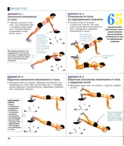 Базовые силовые упражнения для женщин в домашних условиях