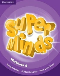 Super Minds Level 6. Workbook