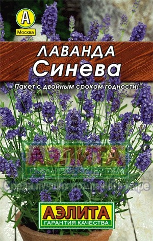 tsveti-dostavka-petropavlovsk-kazahstan